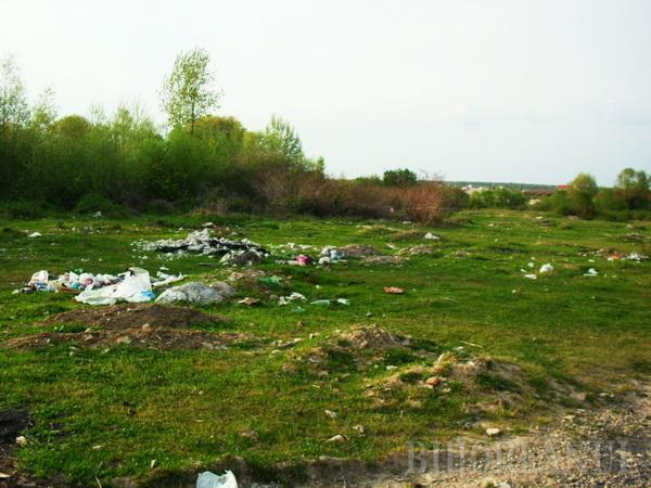 Let's not do it! Voluntarii au făcut curat degeaba în Beiuş