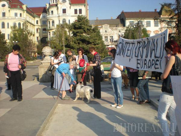 Orădenii au protestat împotriva eutanasierii câinilor