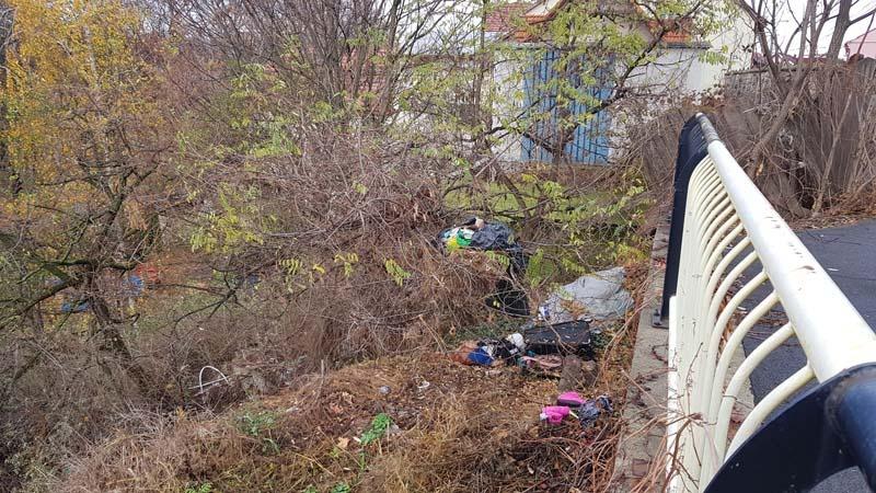 Ne enervează: Strada Olteniei, o nouă groapă de gunoi a Oradiei