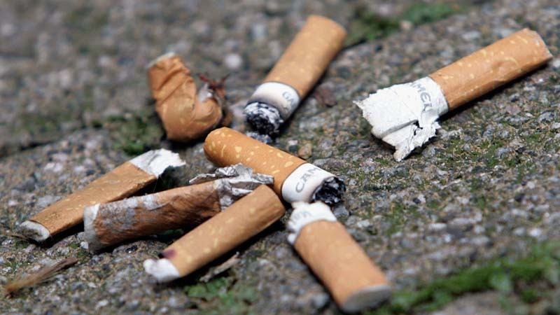 Mucurile de ţigară distrug plantele