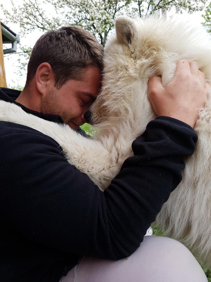 Profu' de armonie: Un orădean iubitor de animale a devenit vedetă pe TikTok, oferind sfaturi pentru dresarea căţeilor (FOTO / VIDEO)