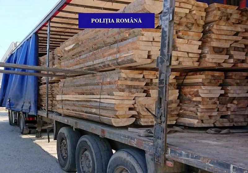 O firmă din Bihor a rămas fără 30 metri cubi de lemne. Amendă de 5.000 lei pentru proprietari