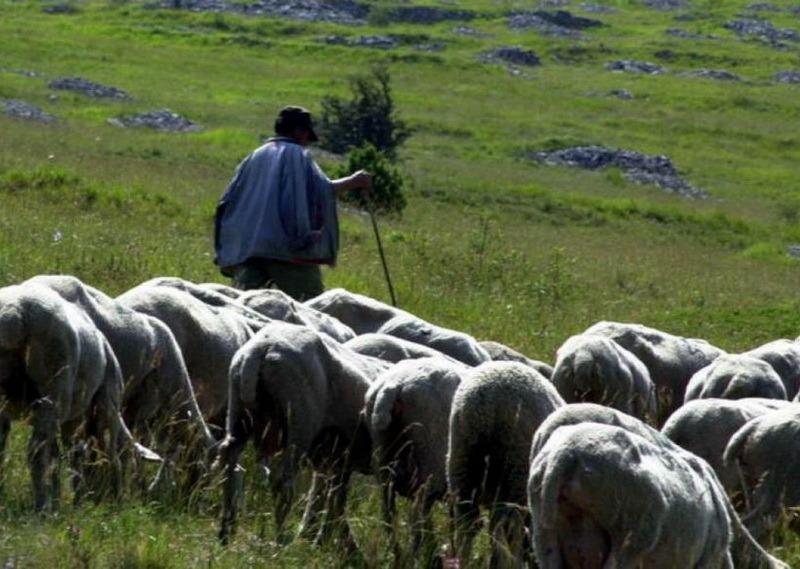 (foto: gazetaromaneasca.com)