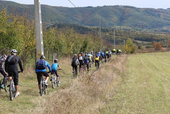 Redescoperă Bihorul pe bicicletă: AMD Bihor vă invită la pedalat pe Drumul Vinului (FOTO)