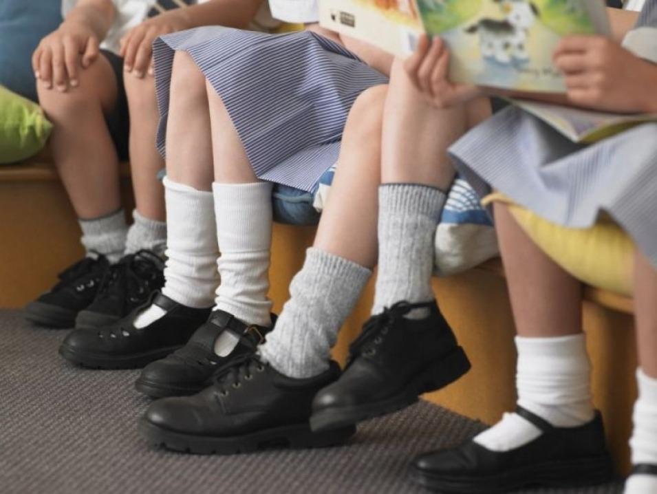 Umilite în curtea şcolii: Elevele unei şcoli din Satu Mare, verificate la chiloţi de directoare