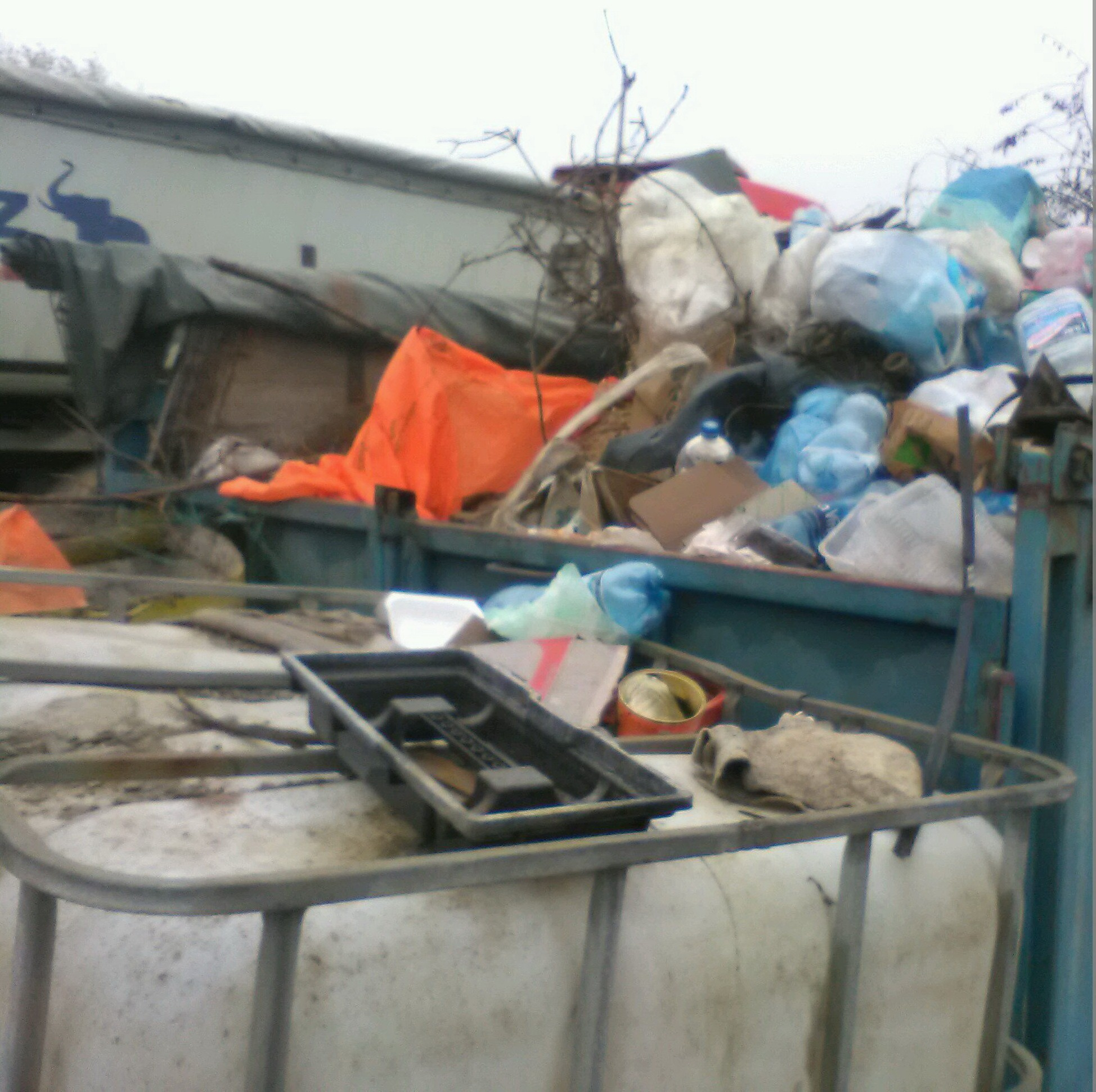 Firmă de pe Calea Borşului din Oradea, amendată pentru poluare: 20.000 de lei, după ce muncitorii au ars gunoaie în curte! (FOTO)