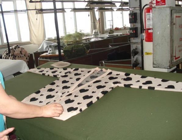 O italiancă, anchetată în Bihor pentru fraudă fiscală de aproape 100.000 lei
