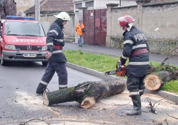 Vântul puternic a smuls acoperişul Bazarului şi a doborât un copac peste trei maşini