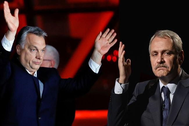 motaj foto: carteajungleipolitice.ro