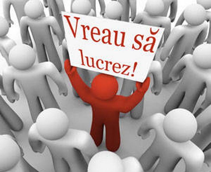 S-a prăbuşit piaţa muncii din Bihor: Într-o săptămână, numărul locurilor de muncă vacante a scăzut dramatic