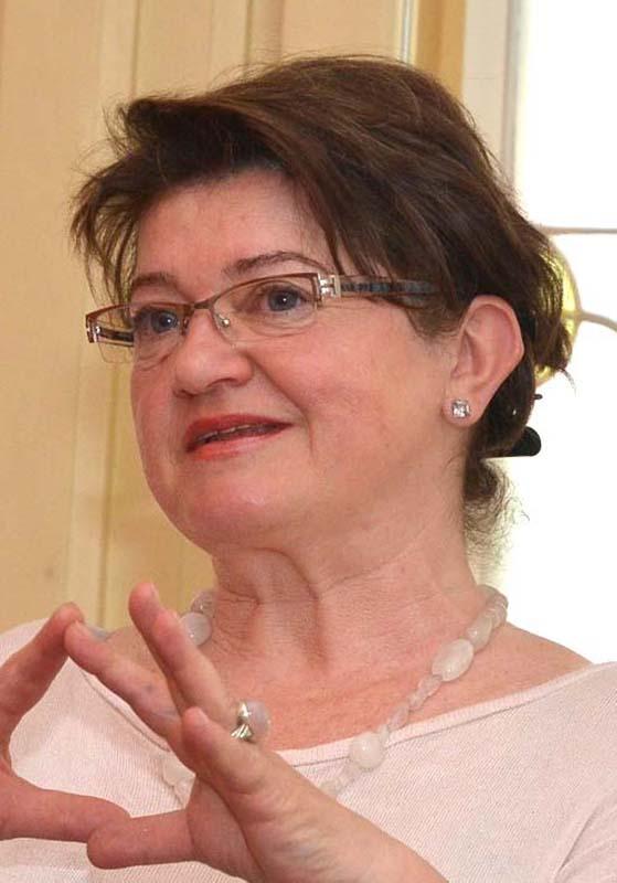 Ramona Novicov, critic de artă