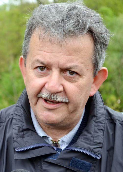 Mircea Ghitea