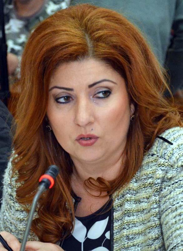 Mariana Blaga, consilier PSD