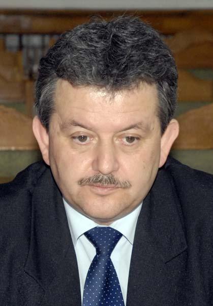 08 Mircea Ghitea.jpg