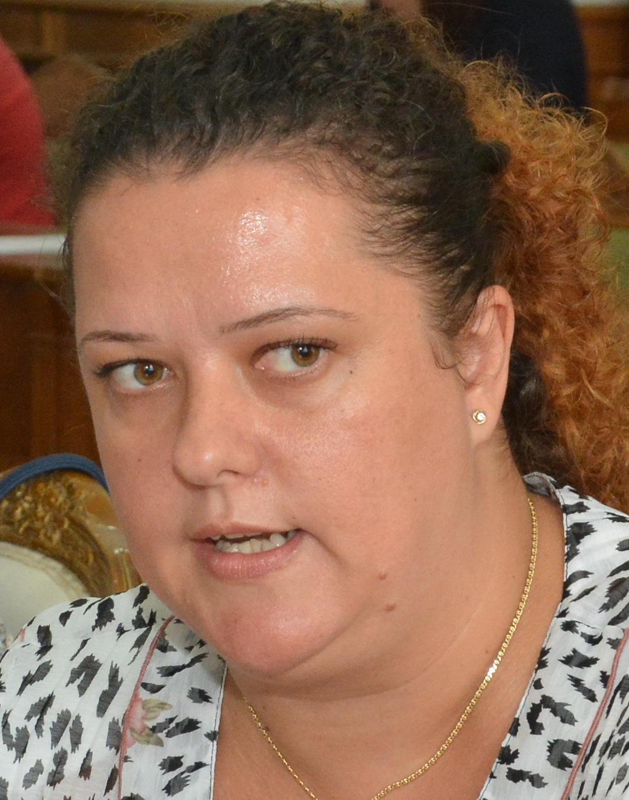 Kirei Melinda, liderul grupului UDMR din Consiliul Local Oradea