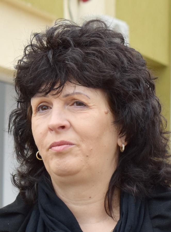 Daniela Vîlceanu, director Colegiul Traian Vuia