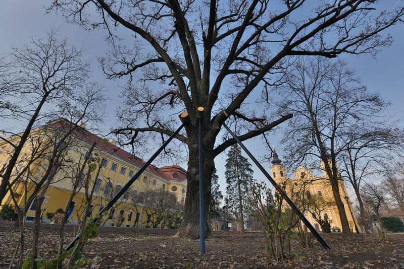 Stejar Palatul Baroc